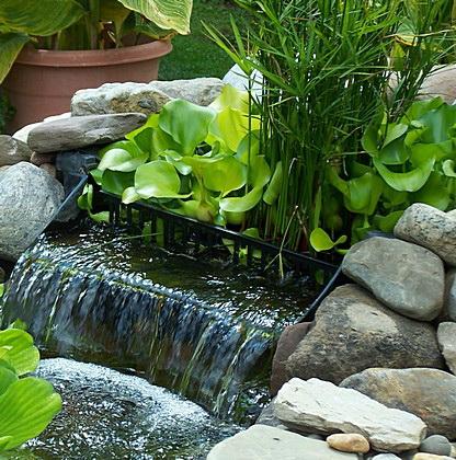 Prírodný rastlinný flter
