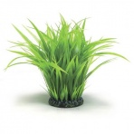 Oase biOrb Grass ring large green