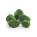 Oase biOrb Moss pebbles
