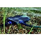 Oase AquaMax Eco Premium 12000 12V